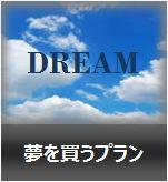 夢を買うプラン